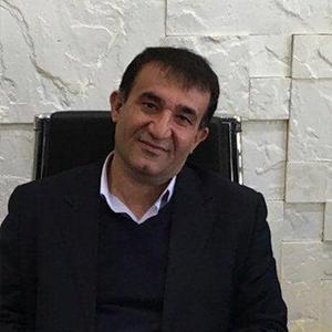 کریم محمودی